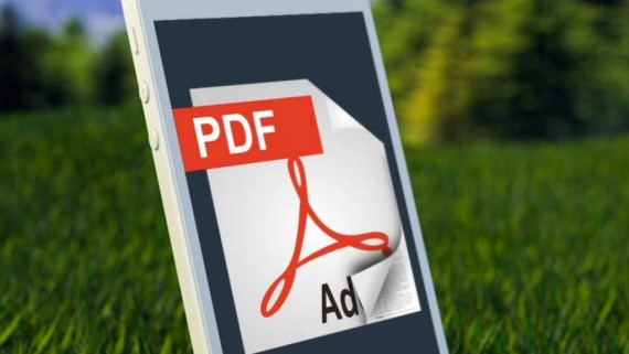 How Can I Turn A Picture Into A Pdf File? Check Out The Easy Steps